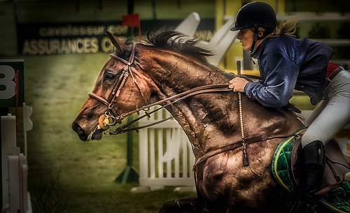 Horse jumping | by pattoise