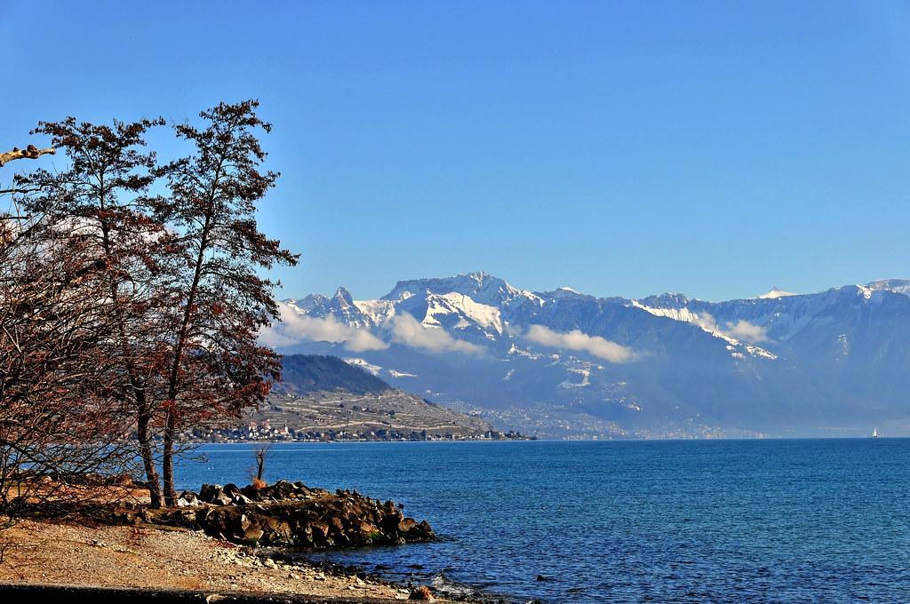 Lac... Lavaux... montagnes....