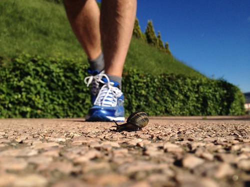 Runners | by Pochestorie