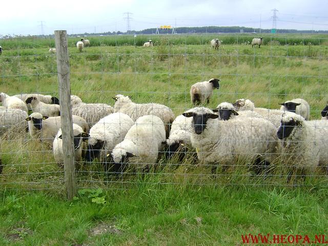Blokje-Gooimeer 43.5 Km 03-08-2008 (62)