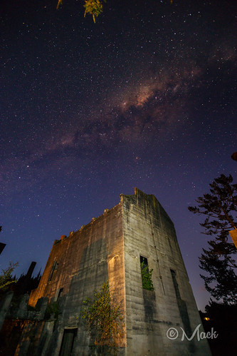 newzealand auckland warkworth