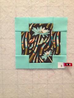 Block 9 Acacia