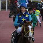 ダグラス・ホワイト / Douglas Whyte - Hanshin Racecourse