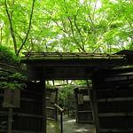 深緑美しき祇王寺