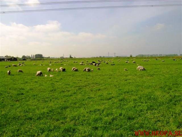 Zwolle 2007   42.5 km (9)