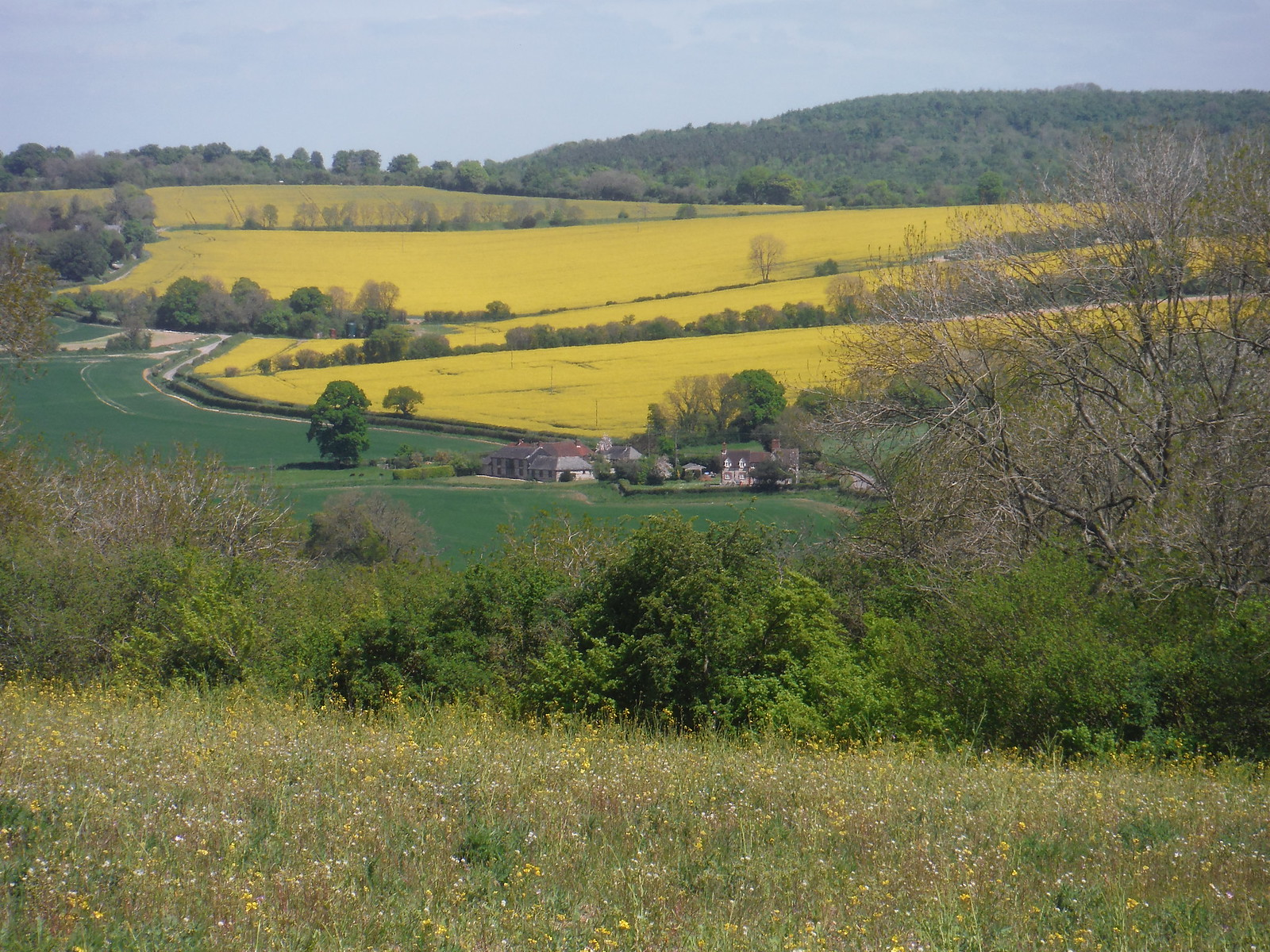 Views up to South Downs Northern Escarpment SWC Walk Rowlands Castle Circular