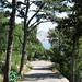 Baška – cestou nahoru na hřbitov, foto: Petr Nejedlý