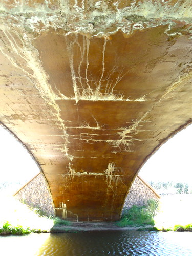 bridge arizona sunlight grass architecture stream hiking scenic corrosion patina deterioration crusted showlowarizona showlow hikingtrails beneaththebridge stainedconcrete whitemountainroad arizonahikingtrails showlowblufftrail showlowbluff showlowblufftrailheadbridge