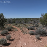 Chinle Trail