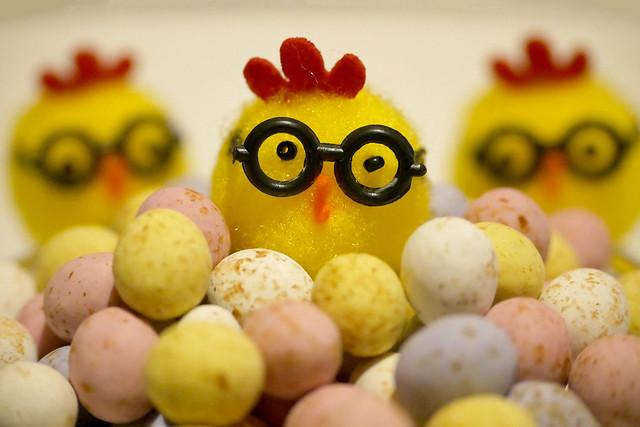 Mini Egg Production Line
