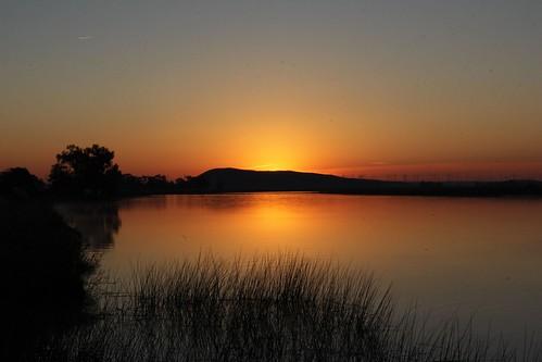 northerncalifornia sunrise wetlands daybreak solanocounty suisunmarsh kirbyhill montezumaslough