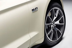 Ford-2015-Mustang-50th-Ed-23