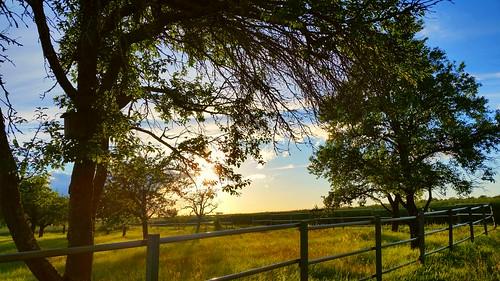 s5 landschaft rural landscape sunset time wanderung hiking spaziergang steiniger weg tübingen effiart art damncool naturemasterclass digitalretouched ppc erwin effinger