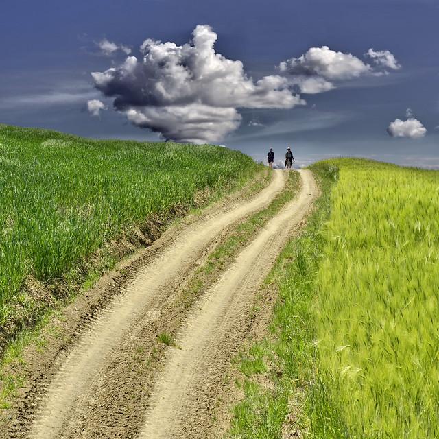 Path of quiet