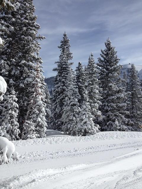 水, 2014-02-05 11:55 - 新雪で真っ白のLittle Maude