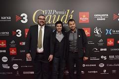 Catifa vermella VII Premis Gaudí (100)