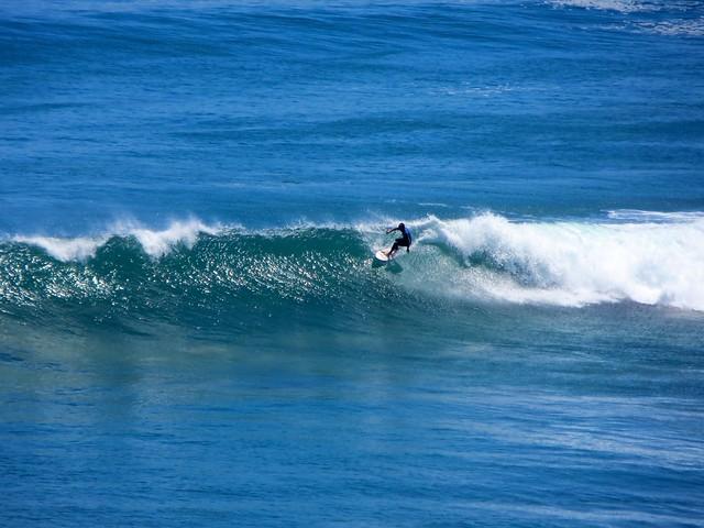 cove surfers