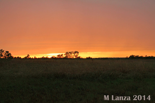 sunset evening spring texas katy prairie fortbendcounty
