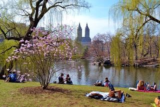 Central Park-The Lake, 04.13.14 | by gigi_nyc