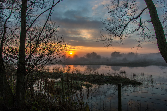 Misty reflections in pool - Pegwell Bay Nature Reserve