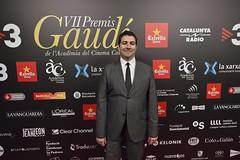 Catifa vermella VII Premis Gaudí (84)