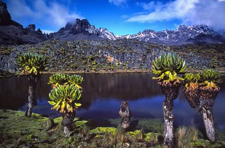 Early morning view of Mt. Kenya's peaks, from an altitude of 4,290 meters (14,075 ft)   by Ray in Manila