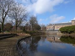 Paleistuin, Den Haag