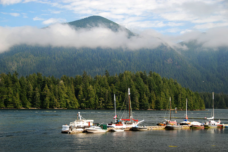 Meares Island, Tofino, West Coast Vancouver Island, British Columbia