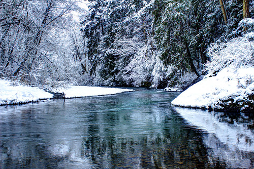blue trees winter snow nature water creek canon river landscape stream deschutes washingtonstate t4i 1riverat matthewreichel