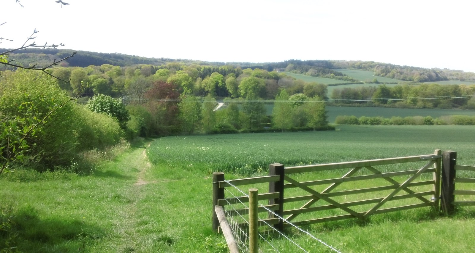 Vista Descent towards Dirtywood Farm