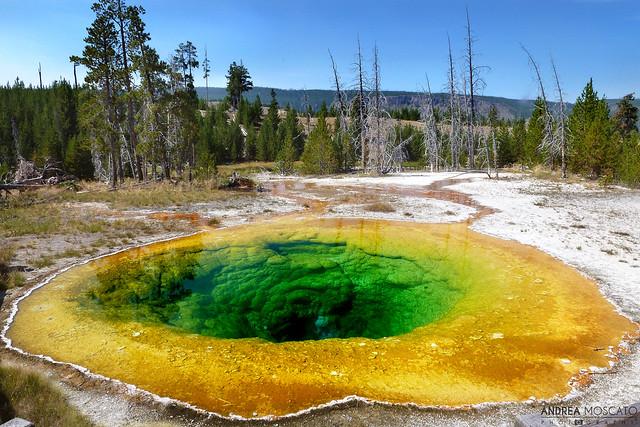 Morning Glory Pool - Yellowstone National Park, Wyoming