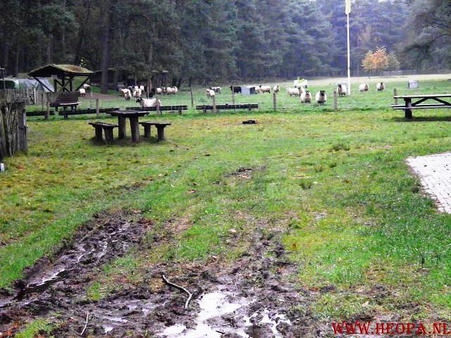 20-10-2012     Wedeblick-   Driebergen        25 Km (39)