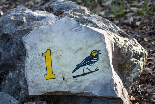 Markers on the Cactus Rock Trail at Balcones Canyonlands NWR