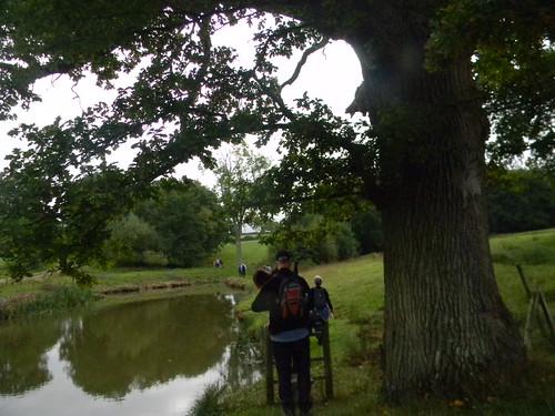 Pond Hever to Ashurst