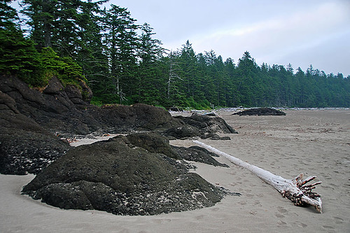 Raft Cove Provincial Park, West Coast Vancouver Island, British Columbia, Canada