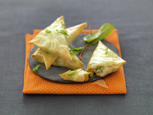SAMOSA | by studio mixture