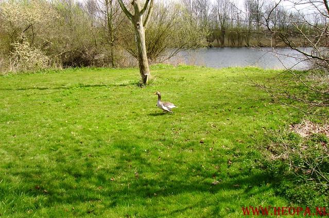 Natuurlijk Flevoland  12-04-2008  40Km (60)