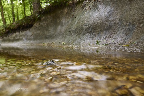 creek virginia petersburg pebbles clay
