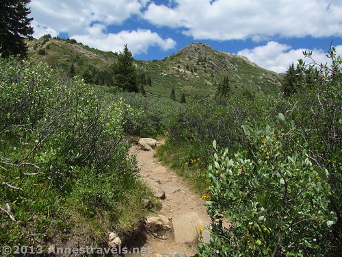 Linkins Lake Trail, White River National Forest, Colorado