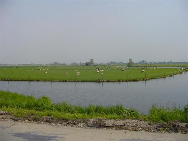 Hoorn          07-05-2006 30Km  (33)