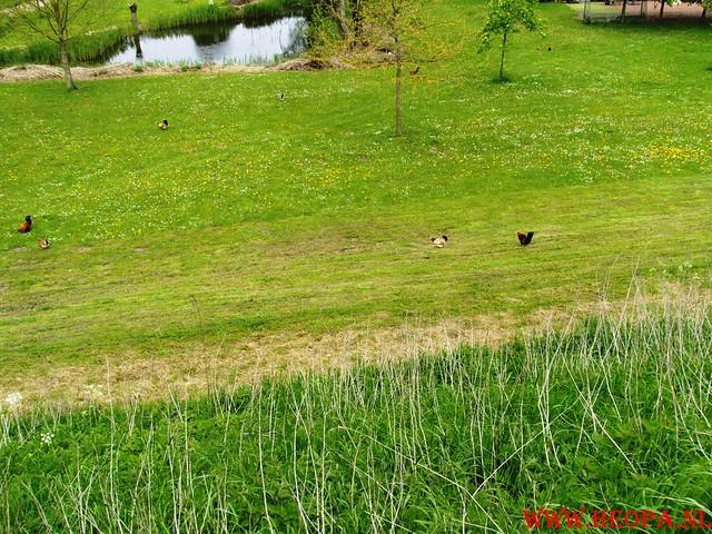 15-05-2010  Hoornaar 41 Km (66)