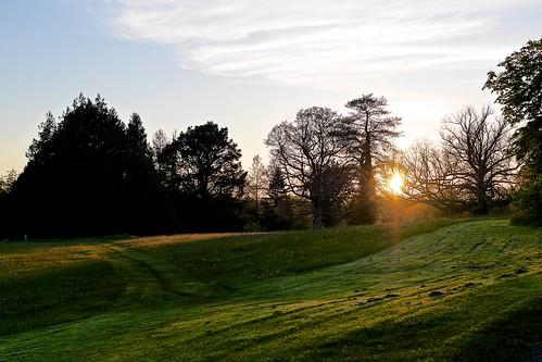 park leica ireland sunset forest lumix key lough f14 panasonic summilux boyle 25mm roscommon gh3