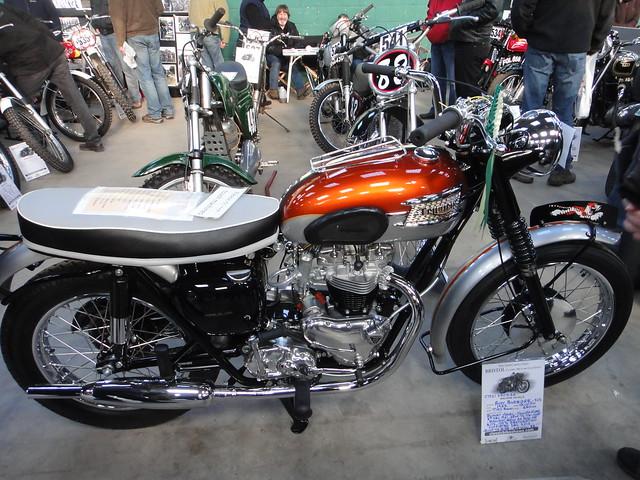 650 Triumph