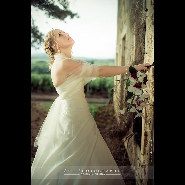 Wedding Delphine & Stéphane   NIKON D3s