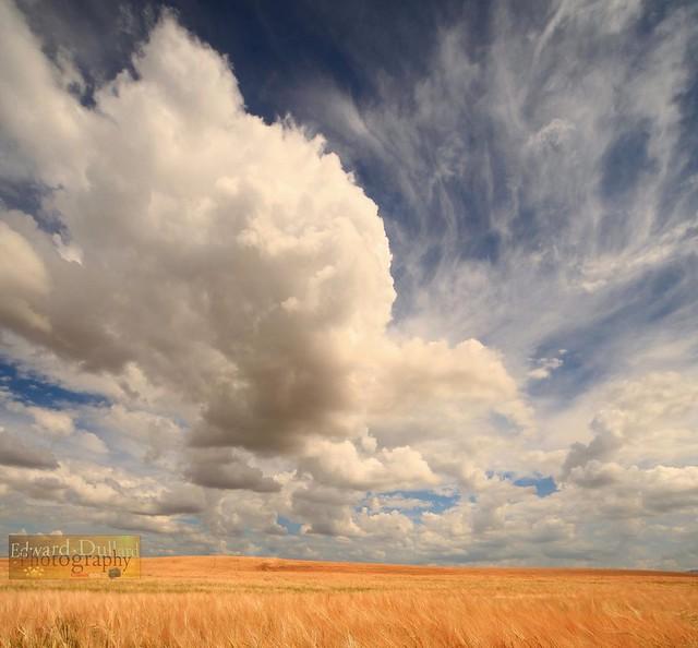 Clouds over an Irish field.