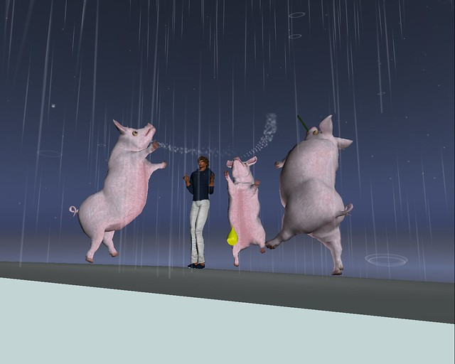Echoes in the Garden - Dancing with Pigs in the Rain