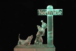 North Pole-Steve Brice-2010