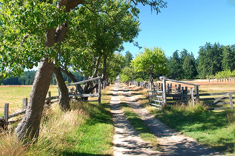 Ruckle Farm in Ruckle Park, Saltspring Island, Gulf Islands National Park, British Columbia, Canada
