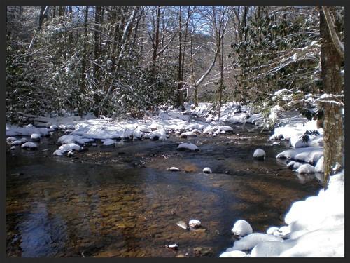 show trees winter mountains sunshine creek forest countryside nc woods rocks stream stones nationalforest clear transparent february thaw dillingham 2014 bigivy mystuart cornerrock