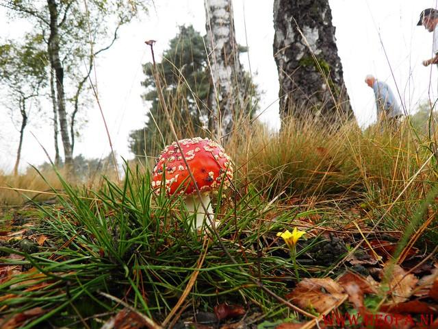 20-10-2012     Wedeblick-   Driebergen        25 Km (22)